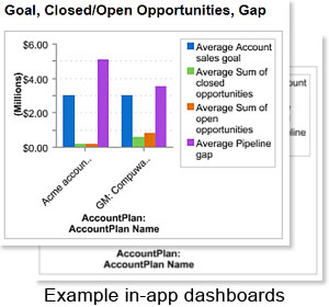 Account Plan Pro in-app dashboards