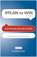 Plan 2 Win book cover